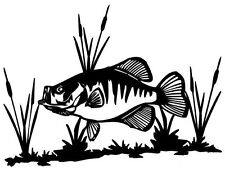 Crappie & Cattails Decal MD Fishing Boat/Truck Window Stickers