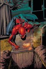 Marvel The Amazing Spider-Man No.581 Cover: Spider-Man Poster