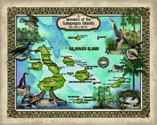 209 Galapagos Islands vintage historic antique map painting poster print