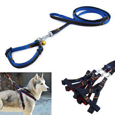 2016 Pet Dog Puppy Strong Denim Harness With Leash Lead Rope