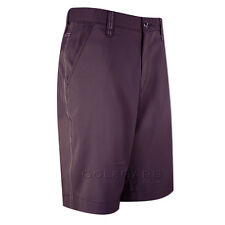 Dwyers & Co Stretch-Tec Shorts with Spearmint Embroidered Logo