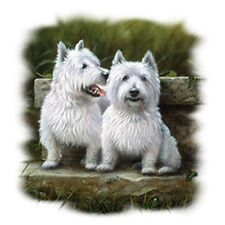 Two Westies  Dog  Tshirt   Sizes/Colors