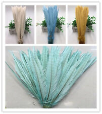 Beautiful! 10-200pcs natural pheasant tail feathers 10-12inch/25-30cm (4 colors)