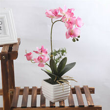 Artificial Butterfly Orchid Silk Flower Home Wedding Decor Floral Bonsai 3 Color