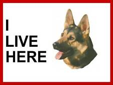 """I LIVE HERE"" DOG SIGN,WITH YOUR CHOSEN IMAGE"