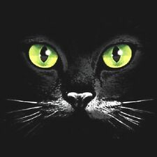 """"""" CAT EYES """"  Woman's T Shirt  All Sizes And Colors New (10)"""