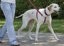 Lupine Dog No-Pull Training Harness. Lifetime Guarantee! Quick, simple & easy.