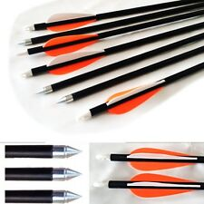 12 Fibreglass Archery Arrows with steel tip suits Compound & Recurve Bow