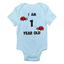 I AM 1 YEAR OLD - Age / One / Birth / Ladybird / Bug Themed Baby Grow / Suit