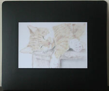 Cat and Kitten Mousemats - with Original Art Print Insert. Different Designs
