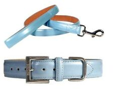 Icy Blue Patent Leather Dog and Puppy Collars