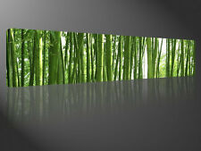 Stretched Canvas Print - GREEN WALL Bamboo Forest Nature Large Wall Art s2023