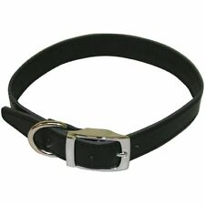 """BBD Pet Products Plain Leather Collar 1"""" x 18""""-21"""""""