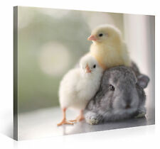 Stretched Canvas Print - FURRY FRIENDSHIP Large Animal Wall Art s4133