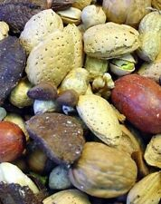 parrot treats Macaws,Mixed Nuts in Shell Pecans, Almonds, Brazil Nuts, Hazelnuts