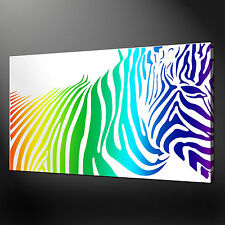 ZEBRA RAINBOW CANVAS WALL ART PICTURES PRINTS VARIETY OF SIZES FREE UK P&P