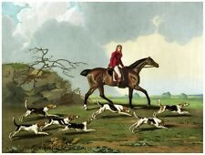 8911.Man on horse with hunting dogs running.POSTER.art wall decor graphic art