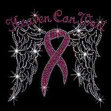 Heaven Can Wait Breast Cancer Awareness Rhinestones All Sizes New