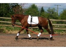 Equi Ami Lunging Set, Equi Ami Lunging Aid, Cavesson and Roller Set Cob or Full