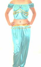 SALE ! ADULT BLUE  ALADDIN JASMINE COSTUME GENIE ARABIAN HAREM BELLY  COSTUME