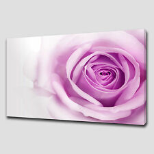 PURPLE ROSE LARGE CANVAS WALL ART PICTURES PRINTS