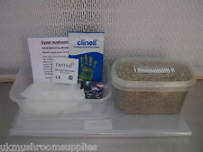 *NEW* Magic farm's complete oyster mushroom growing kit -large grow pot & spores