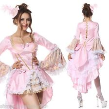 Deluxe Femme Sexy Rose Marie Antoinette Baroque fancy dress costume outfit