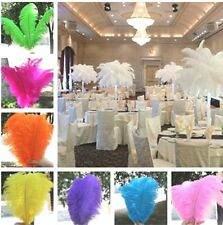 "10 pcs Wholesale beautiful ostrich feathers 10-22""inches 25-55cm Wedding Decor"