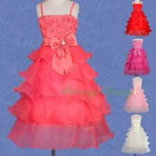 Wedding Flower Girls Bridesmaid Party Occasion Holiday Dress Up Size 2-8 FG136