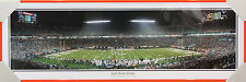 Miami Dolphins | Professionally Framed Panorama Poster