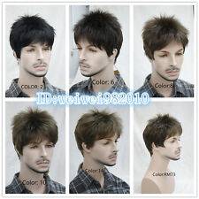 Men's wig High quality Natural fluffy Short hair Wig free shipping