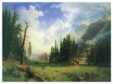 1286 Forest Nature Wall Art Decoration POSTER.Graphics to decorate home office.