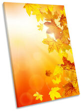 Autumn Leaves Floral  Framed CANVAS WALL ART Print Picture