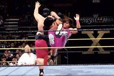 Bret The Hitman Hart - WWE / WWF Wrestling poster print picture photo 033