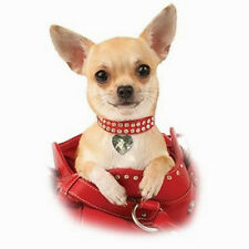 Chihuahua Puppy Dog In Red Purse Handbag Ladies T Shirt  All Size/Colors (9024)