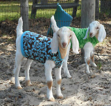 Custom Double Thickness Fleece Goat Kid Lamb Sheep Sweater Coat/ Blanket/ Jacket