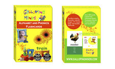 Alphabet, Phonics Flash Cards 170 Words, BEAUTIFUL PICTURES Great Christmas Gift
