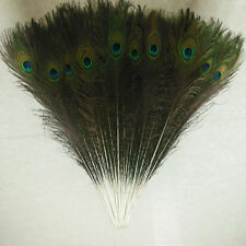 Wholesale  beautiful natural peacock feathers eyes 10-36 inches/25-90 cm