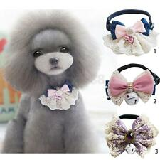 Universal Cute Pet Dog Puppy Collar Necklace with Bell Lace Bowknot Decor