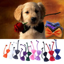 Colorful Cute Dog Puppy Cat Kitten Pet Toy Kid Bow Tie Necktie Collar Clothes