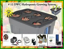 Complete Hydroponic System Self-watering DWC Grow kit #12 H2OToGro FREE SHIPPING