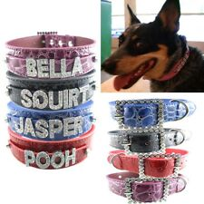 Pet Dog Puppy Cat DIY Personalized Rhinestone Croc Collars With Name Letters