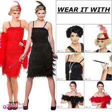 Jazzy Flapper Fringe Costume 1920s 20s 30s Charleston Adult Ladies Fancy Dress