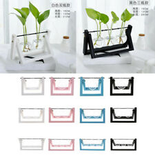 Hanging Glass Flower Vase Tabletop Hydroponic Terrarium Container + Wood Tray