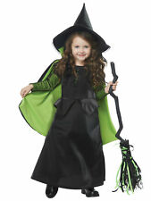 Wicked Witch Dorothy The Wizard Of Oz Story Book Week Toddler Girls Costume