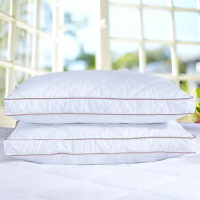 Puredown® Natural  Goose Down Feather Gusseted Bed Pillows for Sleeping