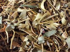Large Bag or Box of Dry Dried Mistletoe Sprigg Spigs 50% Discount