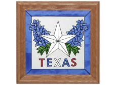 Texas Southwest Framed 13x13 Hand Painted Stained Art Glass Window Suncatcher