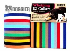 Whelping ID Collars Bands Kitten Puppy Dog 12 Colours Soft Adjustable Reusable