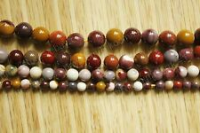 Petrified Wood Fossil Stone Round Beads 15'' Strand  6mm 8mm 10mm 12mm